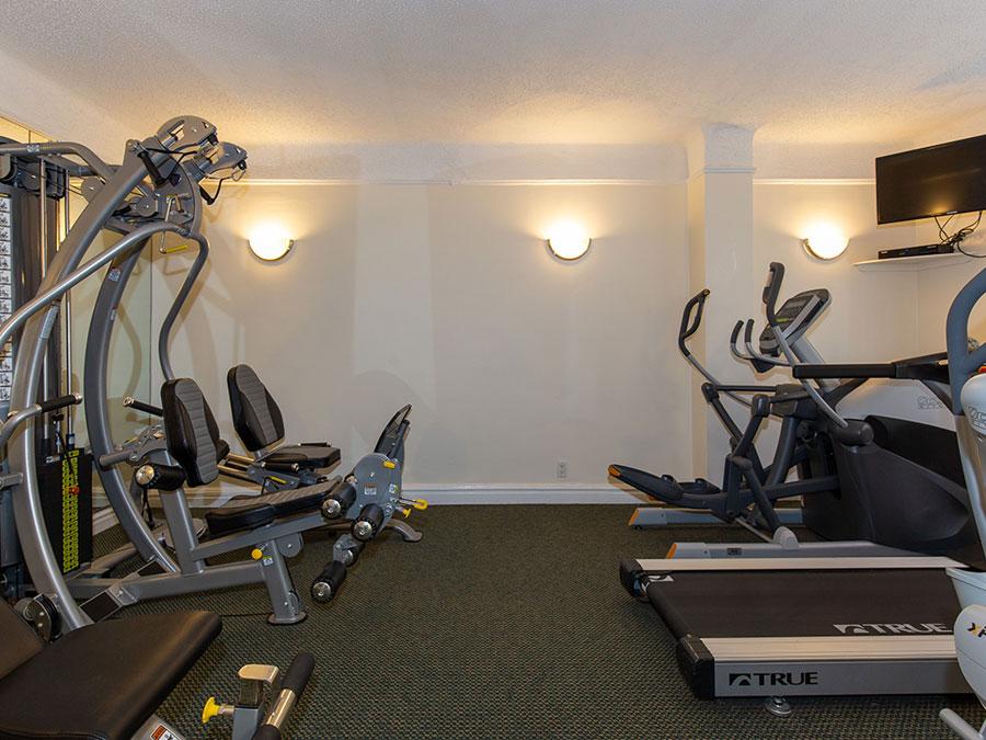 Tudor Arms Gym